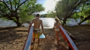st george paddle board rental