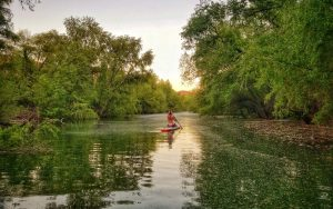 paddle board rentals in st george